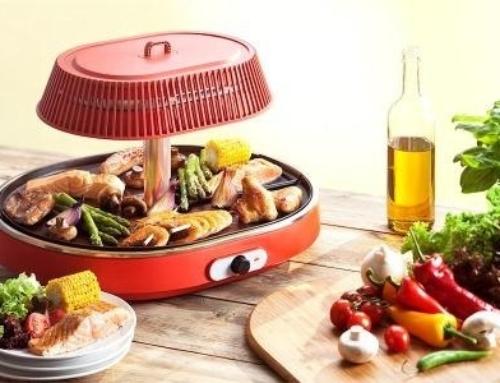 Food & Fun Infrarette LET OP!! Zwitserse Stekker